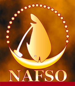 NAFSO English LOGO