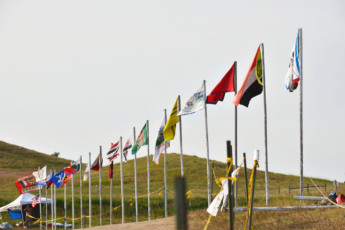 Standing-Rock-Flags